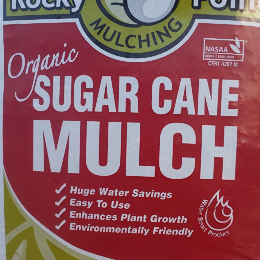 Sugarcane-(Rocky-Point)-Mulch